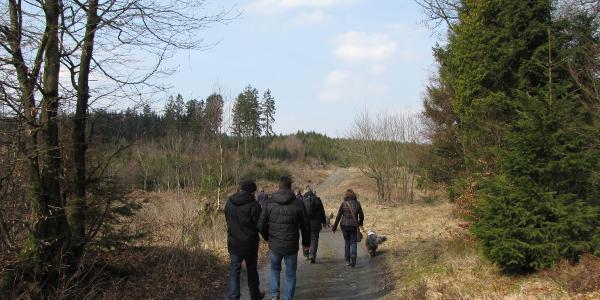 Der Anfang Richtung Plackweg bevor es links ins Tal geht.