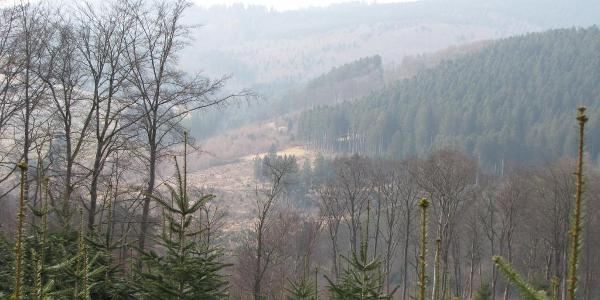 Vom Höhenweg ins Tal. Da unten läuft man auch her.
