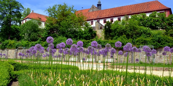 Schloss Iburg - Knotengarten