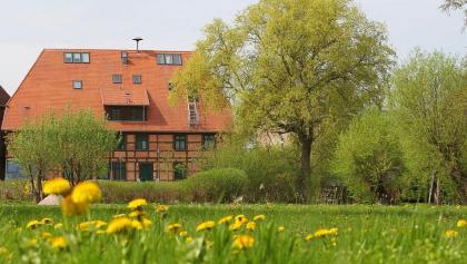 In der ehemaligen Wassermühle von Schwaan werden heute Werke der Schwaaner Künstlerkolonie ausgestellt.