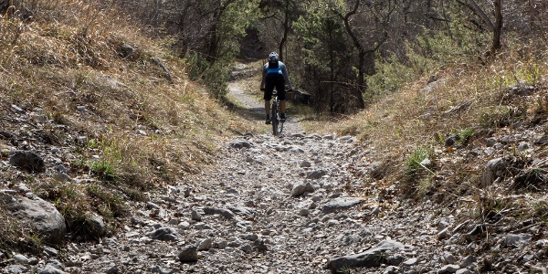 The trail to lake Cavedine
