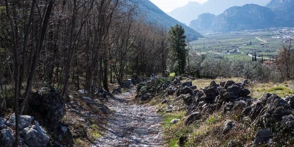 Der letzte Teil der Abfahrt mit Blick auf das untere Sarca Tal
