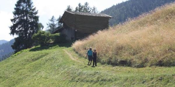 Etappe 16: Auf dem Walserweg Graubünden bei Davos Richtung Stafelalp
