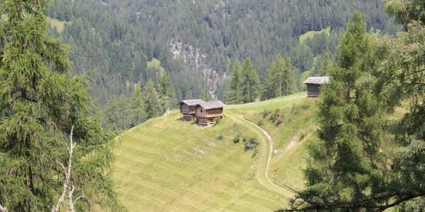 Etappe 13: Spycher bei Jenisberg