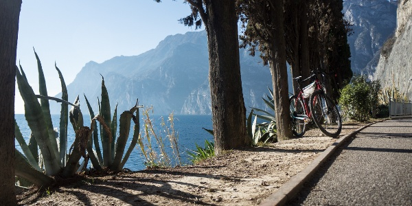 On the bike path between Riva del Garda and Torbole