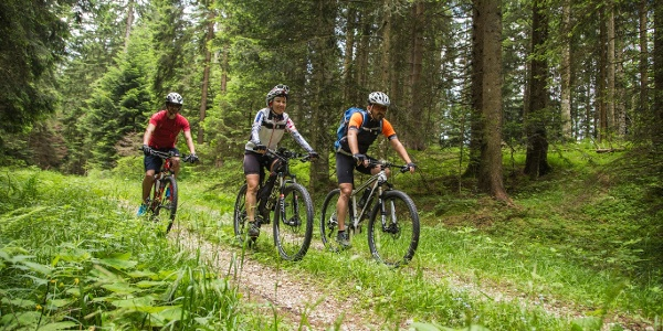Biker sul sentiero
