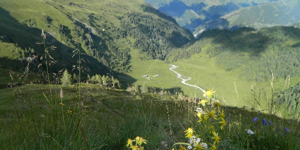 Blick vom Serpentinenweg runter ins Hirzbachtal