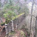 Blick auf Reste der Ruine Wartstein
