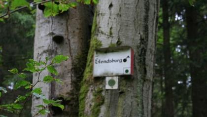 Ruine Elendsburg