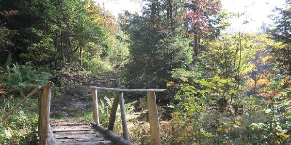 Holzbrücke Wurzelweg Chäswald