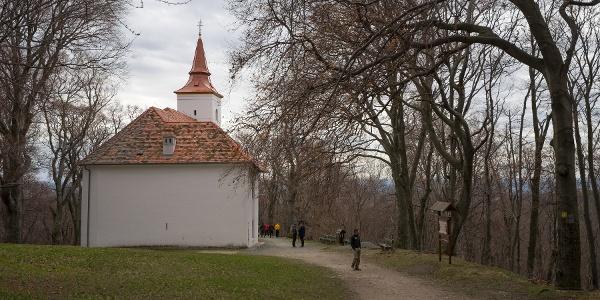 A Szent Vid kápolnához vezető út