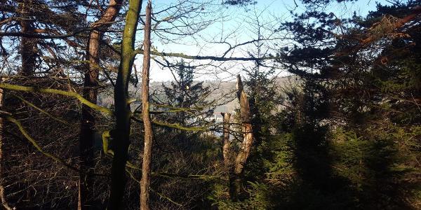 Die Isar bei Grünwald