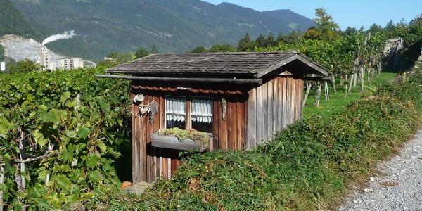 Holzhüttchen im Rebberg