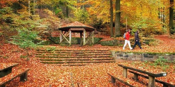 Rehbergquelle im Herbst