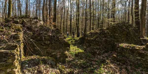 Sarvaly középkori falu templomának romjai