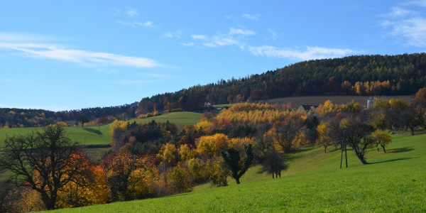 Landschaft rund um Bad Waltersdorf