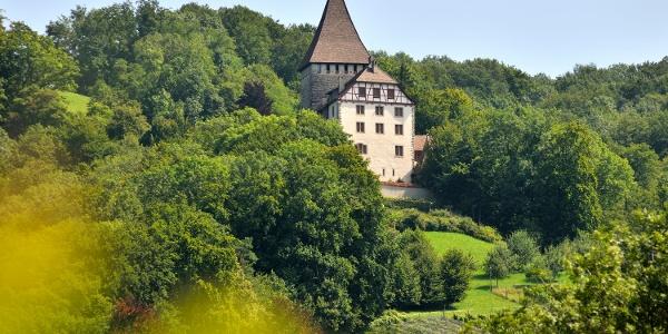 Schloss Weinfelden am Ottenberg