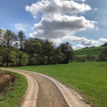 Picture of Hiking Trail: Henschtal - Eichhörnchenweg im Hodenbachtal • Palatine Uplands and Donnersberg (17.04.2018 09:55:09 #4)