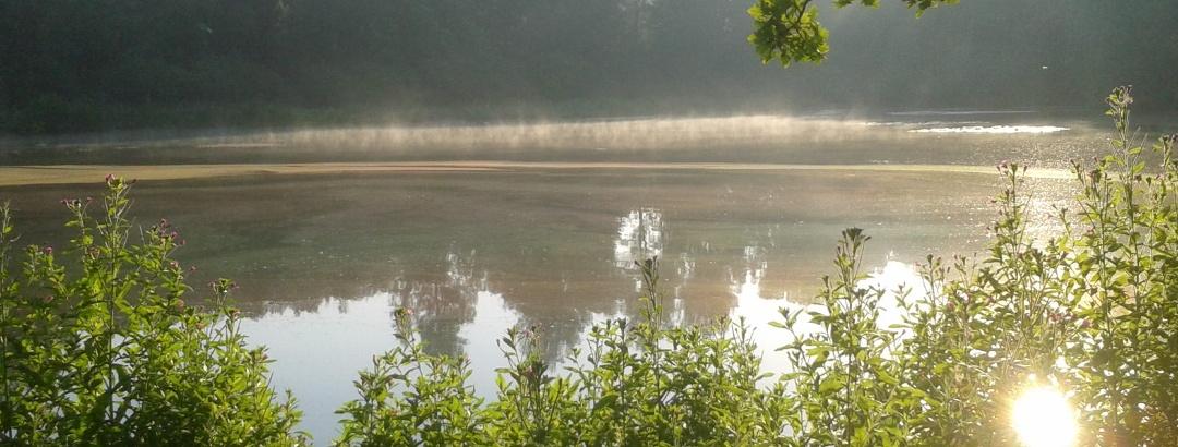 Hölzer See bei Magstadt