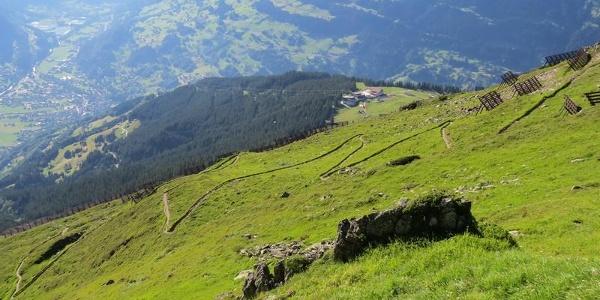Aufstiegsweg zum Sennigrat