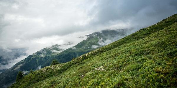 Alpine pastures above Champéry