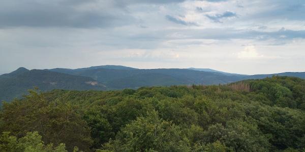 Kilátás a Gortva-Jójárt-kilátóból