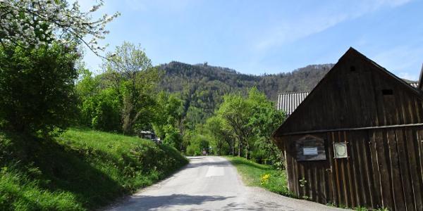 Die Wanderung beginnt auf einer Forststrasse