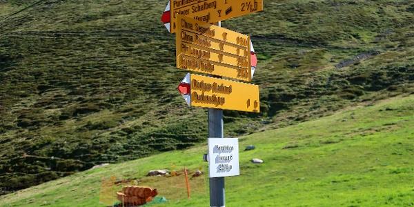 Wegweiser auf der Alp Languard.