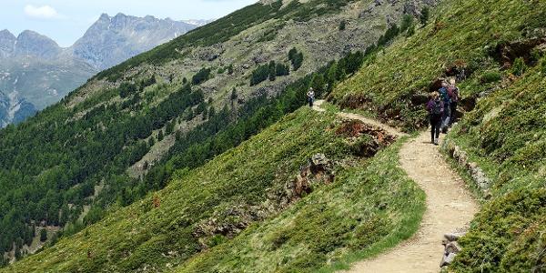 Auf dem Höhenweg Alp Languard nach Muottas Muragl.