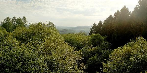 Blick vom Rabenhainturm in Richtung Eiserfeld