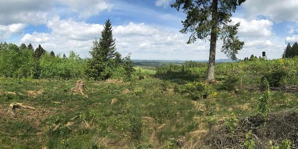 Blick vom Buberg nach Norden