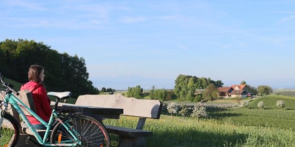 Ausblick zwischen Dieglishofen und Brünnensweiler