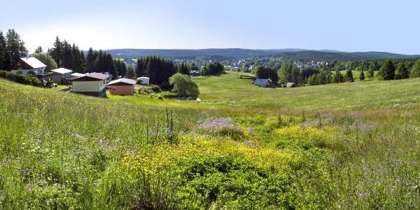 Blick vom Eisenberg auf Schmiedefeld