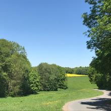 Straße vor Röhrsdorf