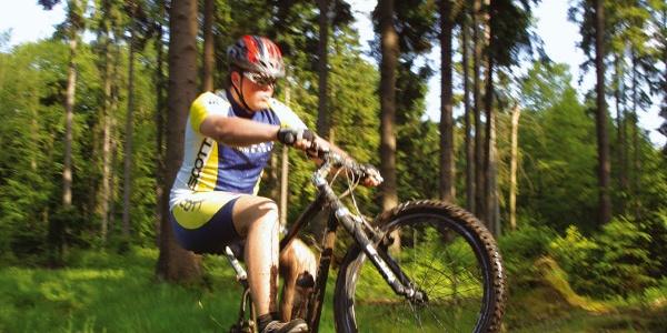 Mountainbiker im Solling
