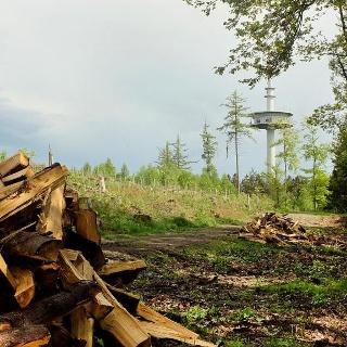 Der Sendeturm auf der Eisernhardt