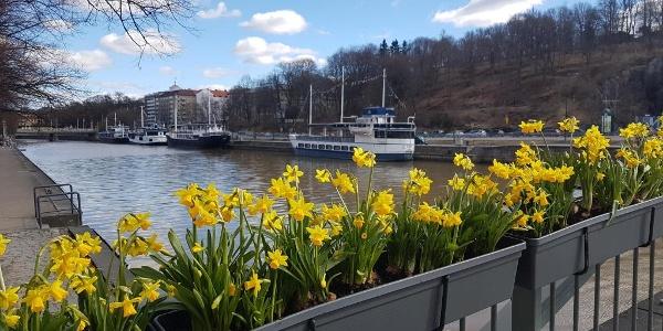 Turku in spring