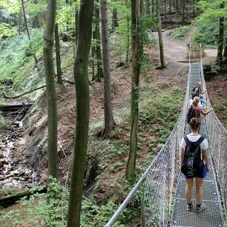 Hängebrücke in der Altenbachklamm