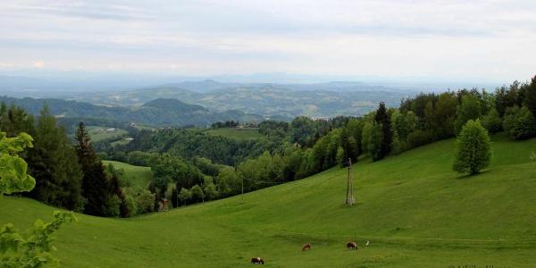 Ausblick Sv. Duh nach Leutschach