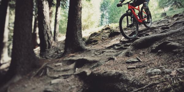 technischer Trail Spaß pur
