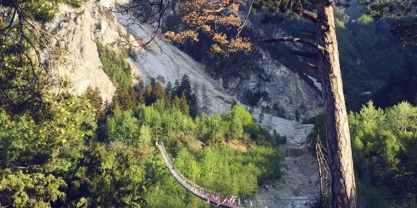 Bhutanbrücke über den Illgraben im Schutzgebiet Pfynwald