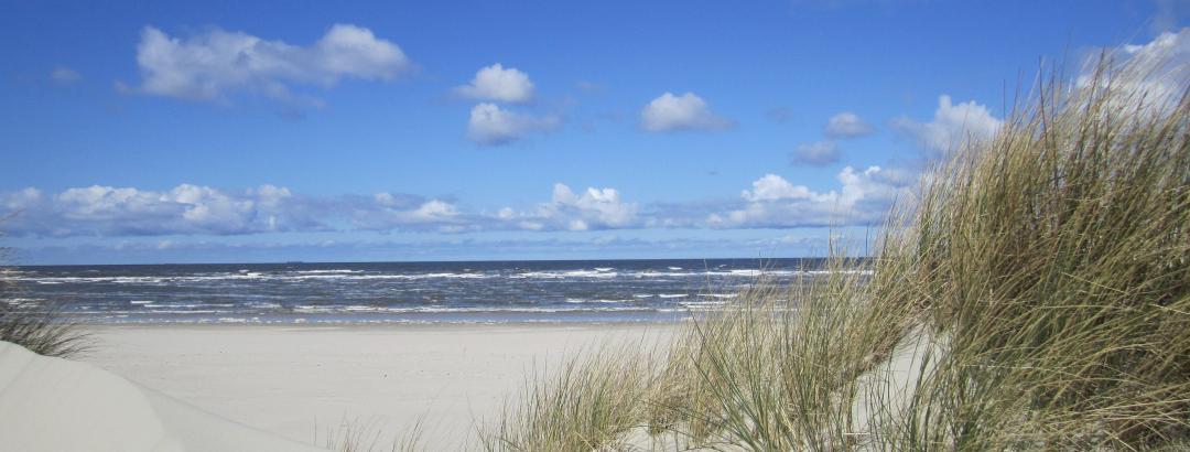 Niedersächsische Nordsee