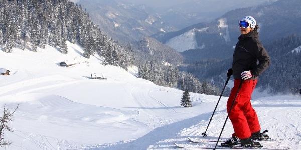 Skigebiet Niederalpl - Plodererhof direkt an der Piste