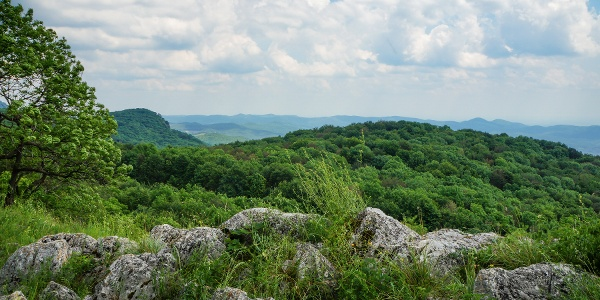 A Pes-kő és a Déli-Bükk