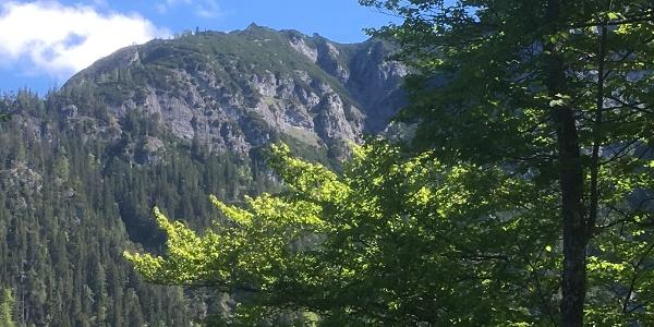 Kinailkopf mit Peter Wiechenthaler Hütte