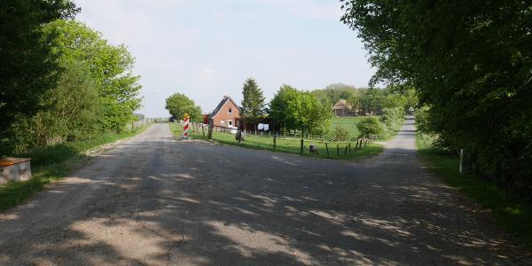 Mühlendeich / Osterweg