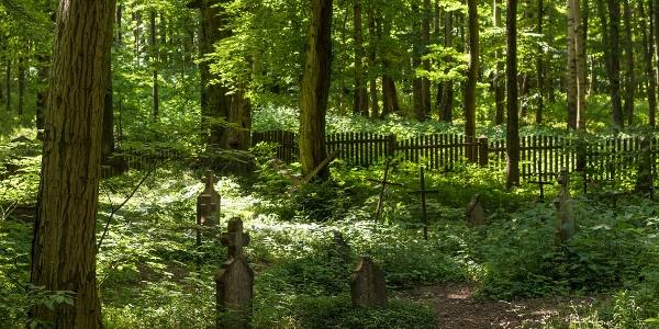 A körtvélyesi erdei temető a Vértesben