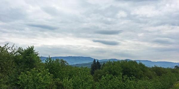 Rheintal mit Blick auf den Schwarzwald