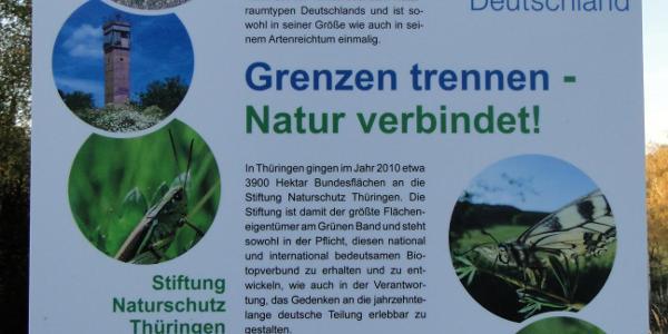 Kleiner deutscher Jugendwald