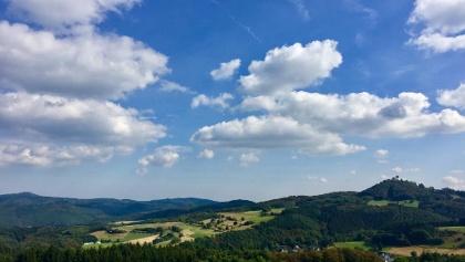 Blick auf Burgruine Nürburg
